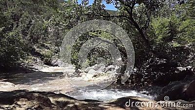 Flusso fresco del fiume video d archivio