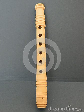 Flute recorder