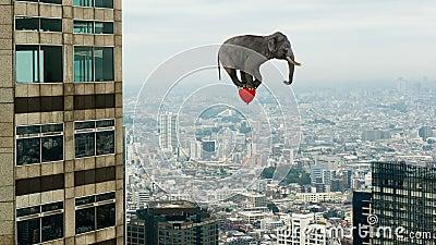 Flutuação engraçada, elefante de voo, balão vermelho