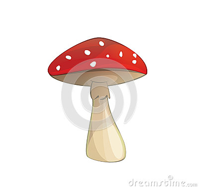 Fly-agaric poisonous mushroom with red cap