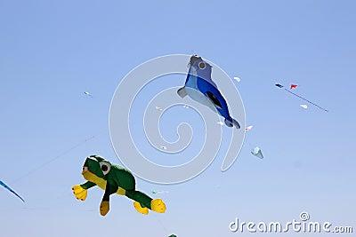 Fly kites