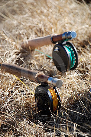 Fly rods in dry grass