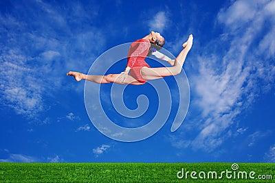 Fly in sky