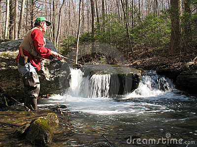 Flyfishing For Brook Trout