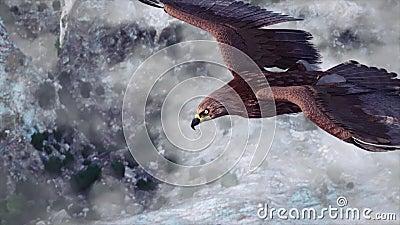 Flygörn med berg och himmel