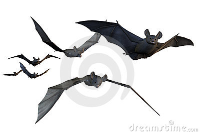 Flying Bats - includes clipping path