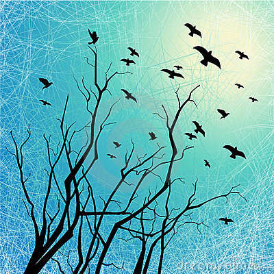 Flying birds and tree branches on grunge back lit