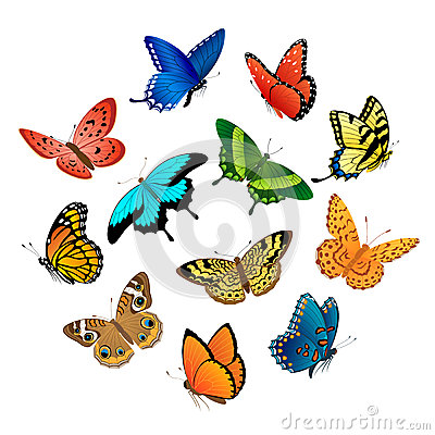Free Flying  Butterflies Royalty Free Stock Photos - 25081028