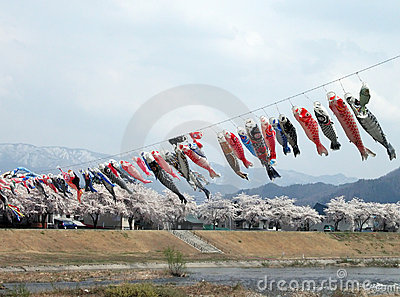 Flying carps in a mountains valley