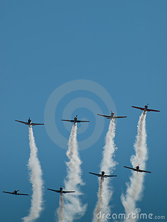 Free Flying In Formation Stock Images - 21361604