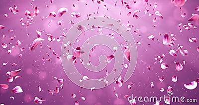 Flying Romantic Red Pink Rose Sakura Flower Petals Falling Background Loop 4k stock footage