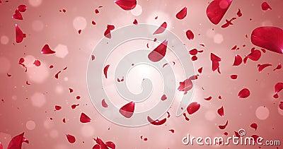 Flying Romantic Red Rose Flower Petals Falling Background Loop 4k stock video footage