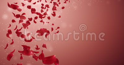 Flying Romantic Red Rose Flower Petals Falling Placeholder Loop 4k stock footage