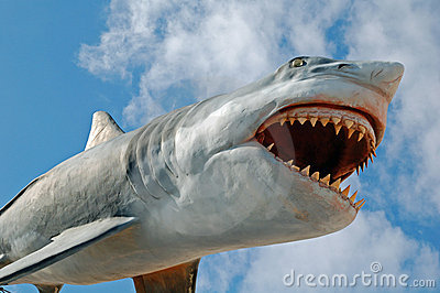 Flying Shark