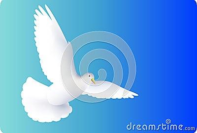 Flying white pigeons