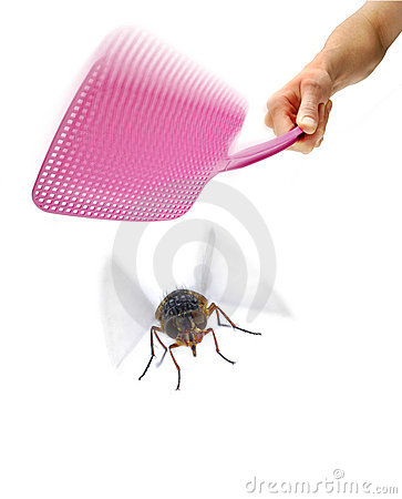 Flyswatter Fly Swat Insect Pest