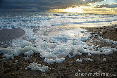 Foam in beach