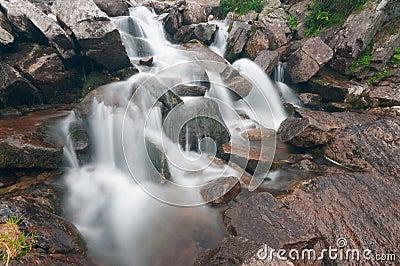 Foamy Mountain Stream