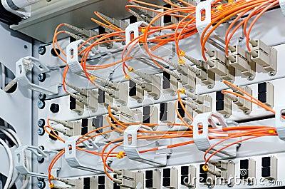 Foco en los cables de fribra óptica