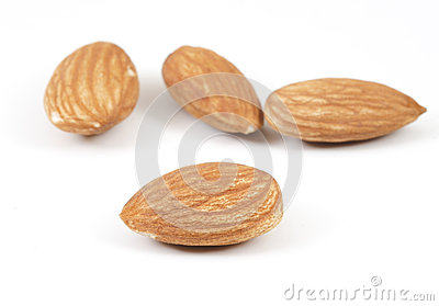 Focus on Almond on White