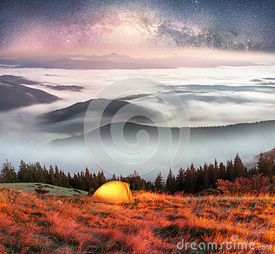 Free Fog In The Autumn Stock Image - 87820761