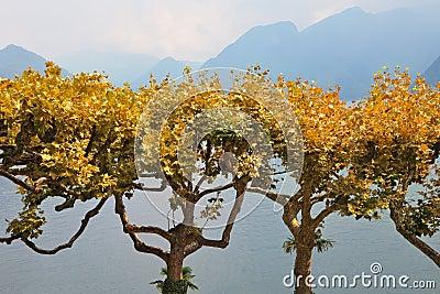 Fog on Lake Como