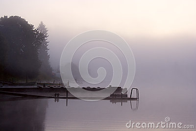 Fog lake trees moorage