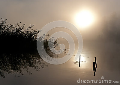 Lake Seliger: Fog Sun Water