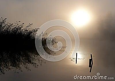 Lake Seliger: Fog Sun Water