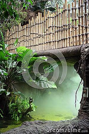 Fog Under a Bamboo Bridge