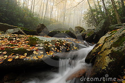 Foggy Autumn Stream In North Carolina Stock Images - Image: 20413324
