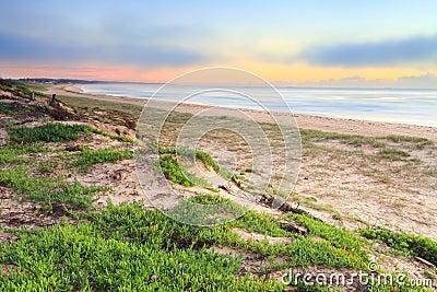 Foggy Beach Sunrise