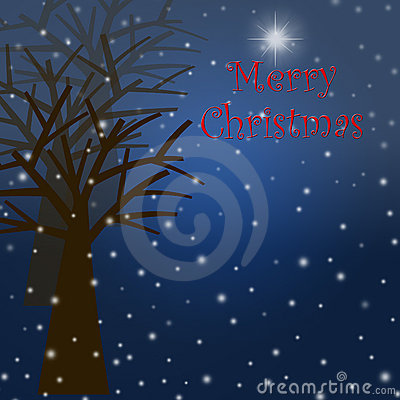 Foggy Christmas Winter Tree Scene with Snowflakes