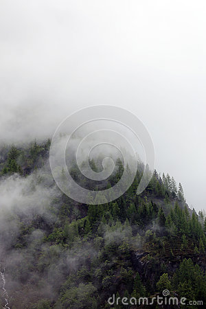 Free Foggy Clouds Rising From Alpine Mountain Forest Stock Photos - 88411823