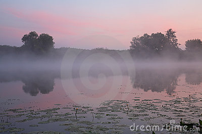 Foggy Dawn Stock Images - Image: 10624294