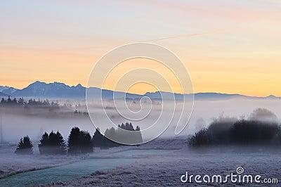 Foggy Deer lake park at sunrise
