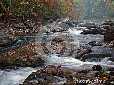 Foggy Fall River Scene