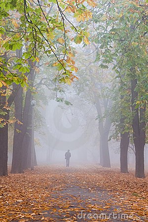 Free Foggy Fall With Lonely Man Stock Photo - 7211580