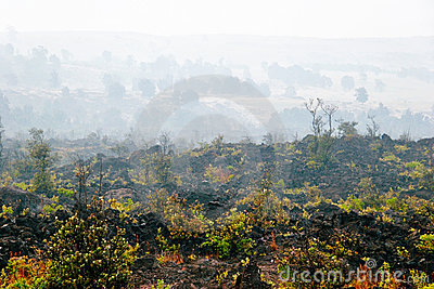 Foggy landscape of the valley