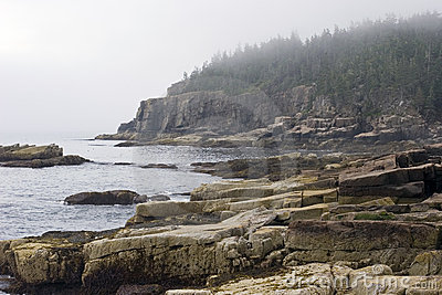Foggy Maine Coast