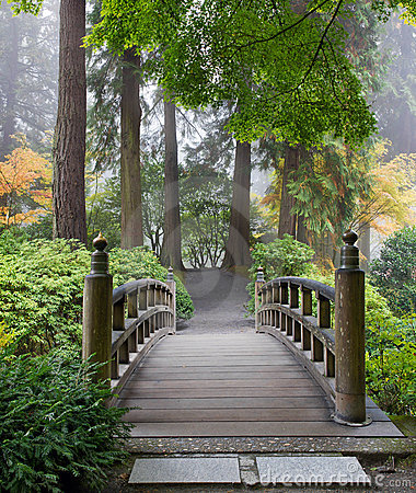 Foggy Morning Foot Bridge Japanese Garden
