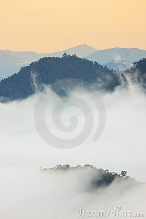 Foggy morning sunrise mountain background