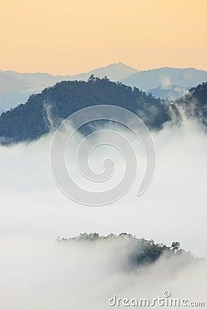 Foggy morning sunrise mountain background