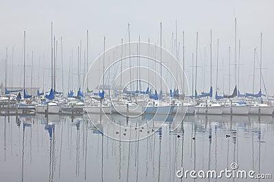 Foggy Sailboat harbor