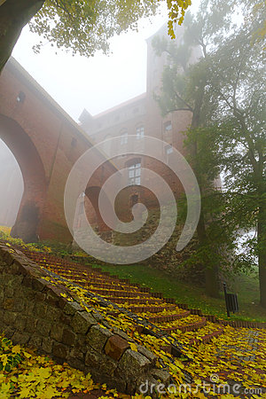 Foggy scenery of Kwidzyn castle and cathedral