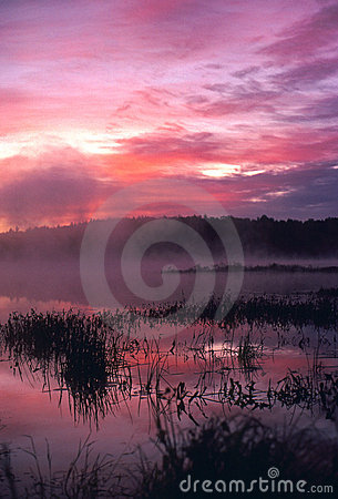 Foggy Sunrise at the Pond