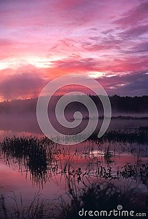 Foggy Sunrise at the Pond