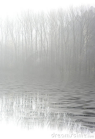 Foggy water landscape
