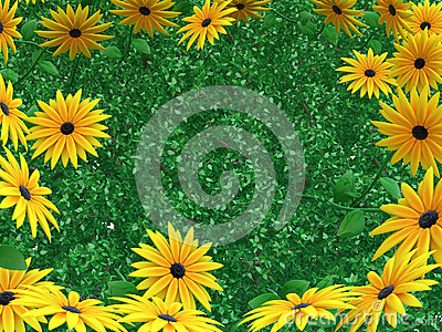 Fogli del fiore