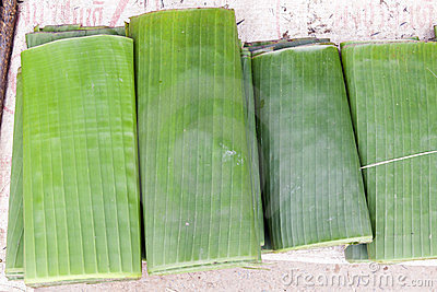 Folded Banana Leaves
